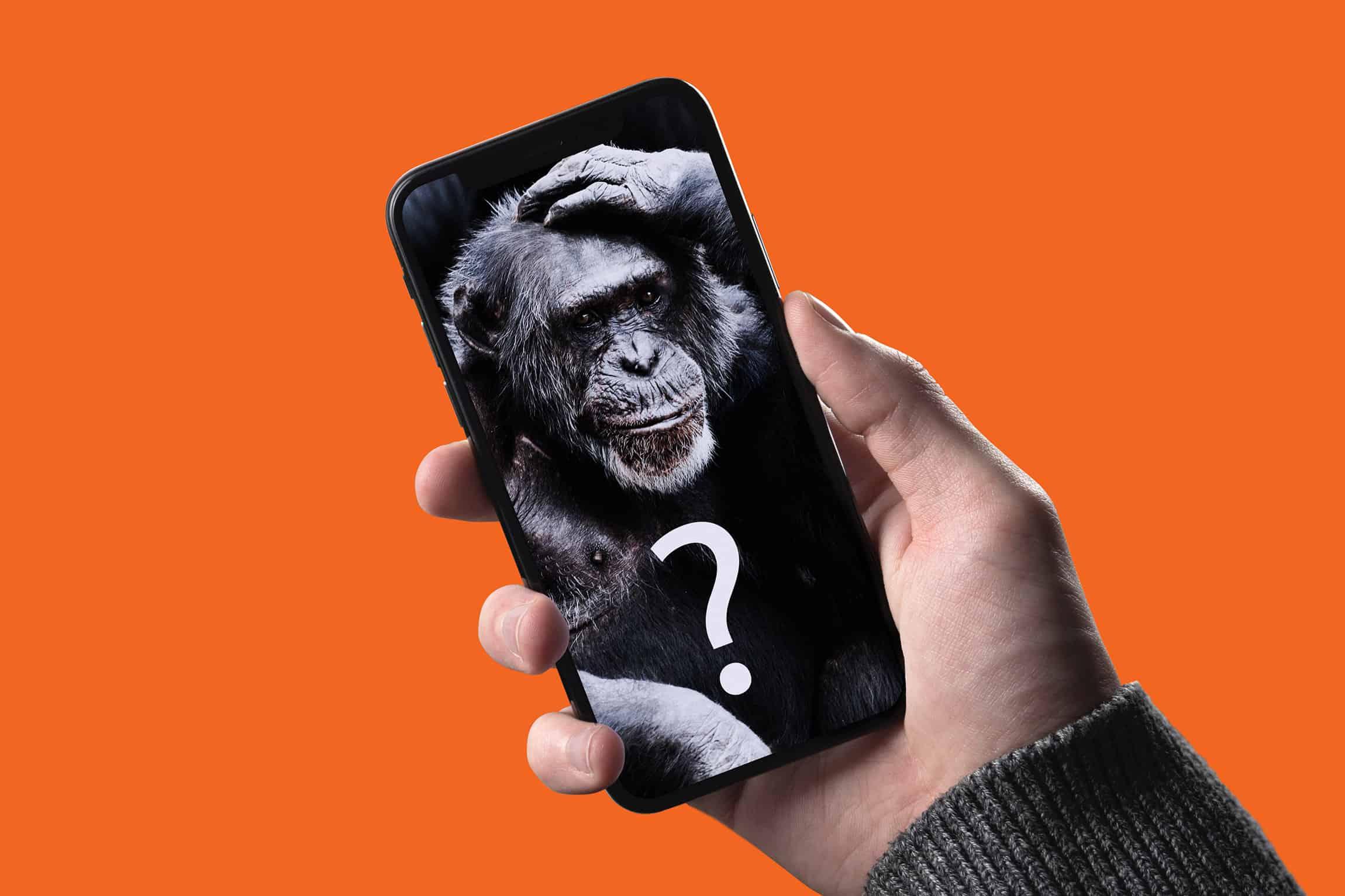 Handy mit Schimpansen
